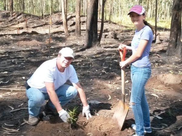 Reforestación | ACTUARIA