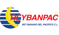 Logo Reybanpac